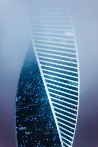 image of DNA strand